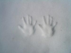 ヤムドク湖 雪の手形